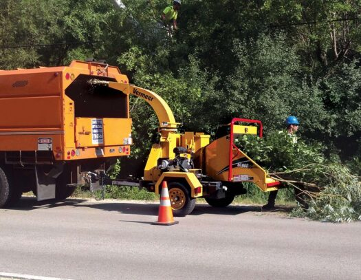 Commercial Tree Services-Lutz FL Tree Trimming and Stump Grinding Services-We Offer Tree Trimming Services, Tree Removal, Tree Pruning, Tree Cutting, Residential and Commercial Tree Trimming Services, Storm Damage, Emergency Tree Removal, Land Clearing, Tree Companies, Tree Care Service, Stump Grinding, and we're the Best Tree Trimming Company Near You Guaranteed!